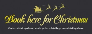 Christmas Booking Banner Black