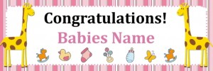 Pink Baby Girl Banner